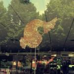 peix_paper_guarda